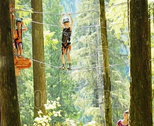 丛林拓展,户外丛林穿越景区 ,拓展游乐设备树上探险丛林项目